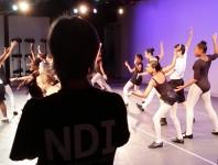 Partners_NDI-summer-recital-wings